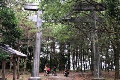 sotto il torii