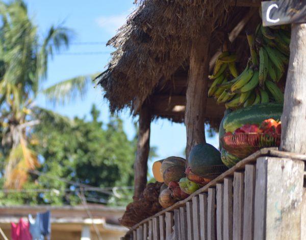 Cuba in bici: da Mariel a Bahia Honda