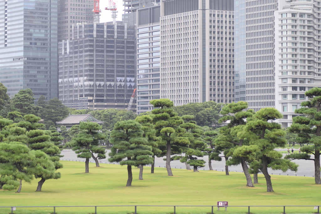 Grattacieli intorno al castello dell'imperatore